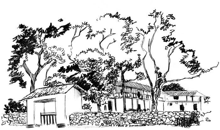 comic-hacienda-canasgordas