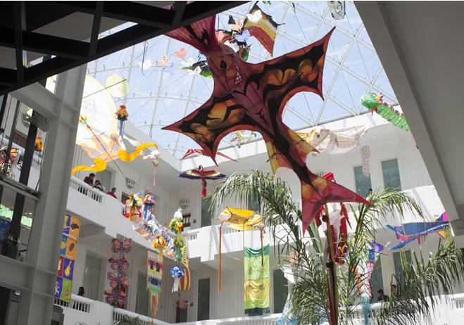 museo-de-arte-popular20160525141540